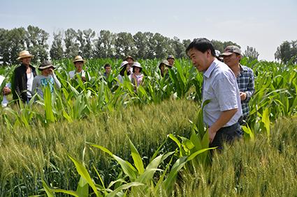 结缘农业     武威市凉州区张义镇,因张义堡古城遗址而得名,境内